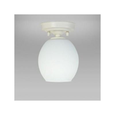 LED小形シーリングライト 天井直付 小形電球50形×1灯相当 昼白色 4904323768431