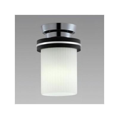 LED小形シーリングライト 天井直付 一般電球60形×1灯相当 昼白色 4904323766598