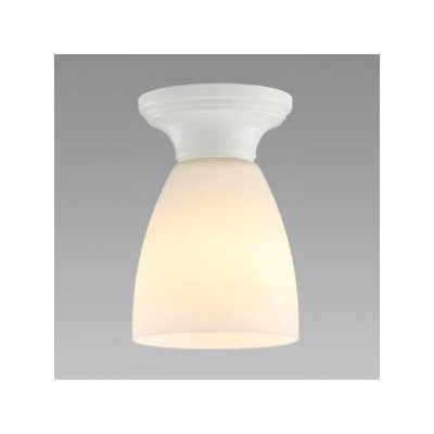 LED小形シーリングライト 天井直付 一般電球50形×1灯相当 電球色 4904323766666