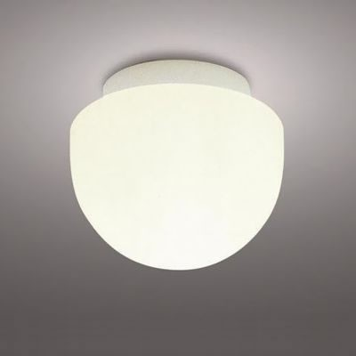 防雨・防湿形ライト 電球形蛍光灯60W形×1灯
