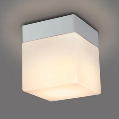 LED浴室灯(天付・壁付兼用) 防雨・防湿形 小形電球25W形×1灯相当