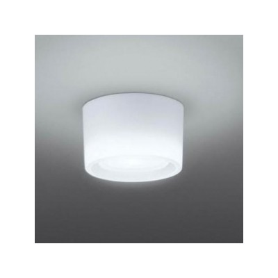 LEDシーリングライト 白熱電球40W相当 昼白色 引掛シーリング 4974550463812