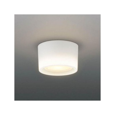 LEDシーリングライト 白熱電球60W相当 電球色 引掛シーリング 4974550463843