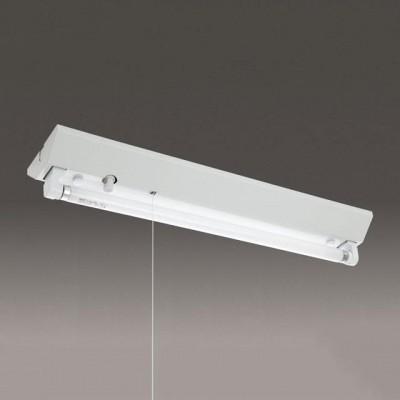 蛍光灯ベースライト 逆富士形 60Hz用 FL20形 プルスイッチ付
