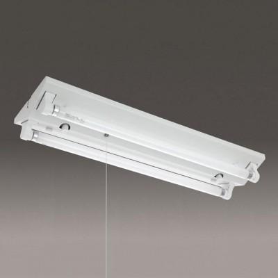 蛍光灯ベースライト 逆富士形 50Hz用 FL20形×2灯 プルスイッチ付