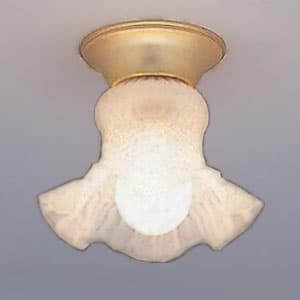 シーリングライト 玄関(内)・廊下用 直付けタイプ 口金E26 LED電球別売り 4902530108859
