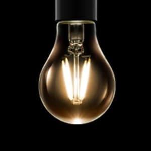 LEDフィラメント電球 クリアタイプ 一般電球40形相当 電球色 E26口金 調光器対応 画像2
