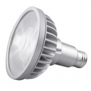 LED電球 ビームランプ形 PAR30Lタイプ 全光束1000lm 配光角9° 電球色 E26口金
